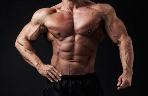 圧倒的筋肉量増加