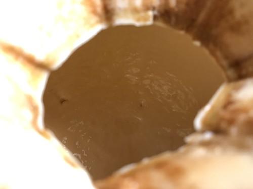 ココナッツの中2