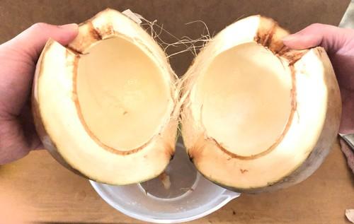 ココナッツを割る