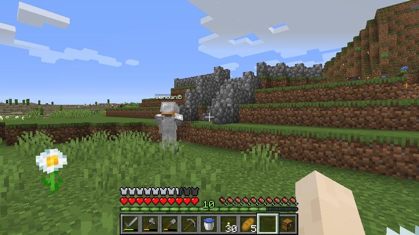 Minecraft(マイクラ)石の柵