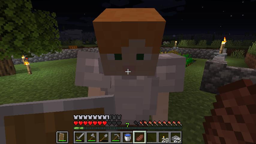 Minecraft(マイクラ)石を奪うぶーぶー